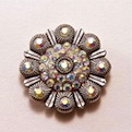 Conchos with Chicago Screw Backs